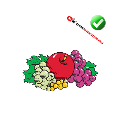 http://www.quizanswers.com/wp-content/uploads/2013/03/colored-fruits-logo-quiz.png
