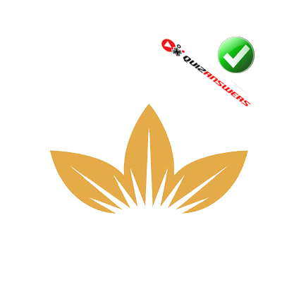 http://www.quizanswers.com/wp-content/uploads/2013/03/three-golden-leaves-logo-quiz.png