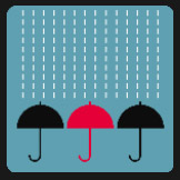 red and black umbrellas on  rain quiz