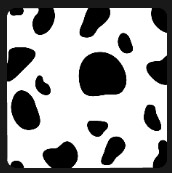 black and white spots quiz