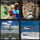 http://www.quizanswers.com/wp-content/uploads/2013/10/4-pics-1-movie-zoo-plane-landing-answer.png