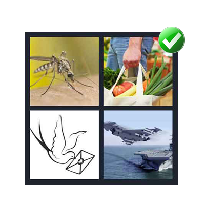 http://www.quizanswers.com/wp-content/uploads/2014/06/4-pics-1-word-7-letters-level-4-Carrier.png
