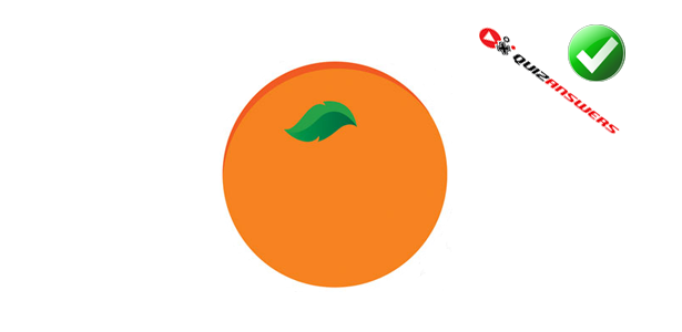 orange fruit logo bing images