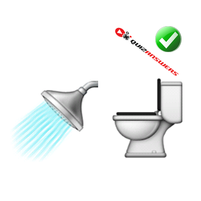 http://www.quizanswers.com/wp-content/uploads/2015/01/shower-head-toilet-seat-guess-the-emoji.png