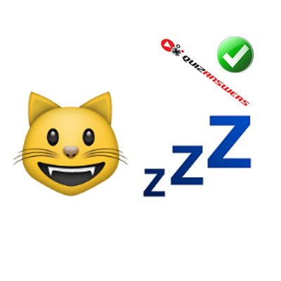 http://www.quizanswers.com/wp-content/uploads/2015/01/yellow-cat-letters-zzz-guess-the-emoji.png
