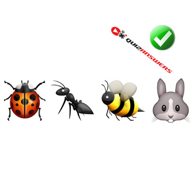 http://www.quizanswers.com/wp-content/uploads/2015/02/three-bugs-rabbit-guess-the-emoji.jpg