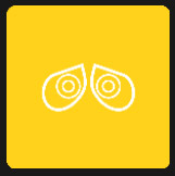 big pointed eyes quiz icon yellow