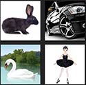 https://www.quizanswers.com/wp-content/uploads/2013/09/four-pics-one-movie-level-1-rabbit-swan-and-black-car.jpg