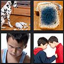 4 pics 1 movie dalmatioan dog bread boys