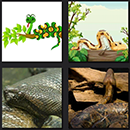 https://www.quizanswers.com/wp-content/uploads/2013/10/4-pics-1-movie-level-2-cheats-snake-images.png