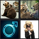 4 pics 1 movie level 5 solution bears and male sign
