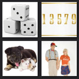 dog, dice, numbers, level 8