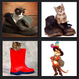 photos with cats in boots