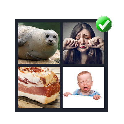 4 pics 1 word 7 letters quiz answers level 5 314 369 blubber expocarfo Gallery