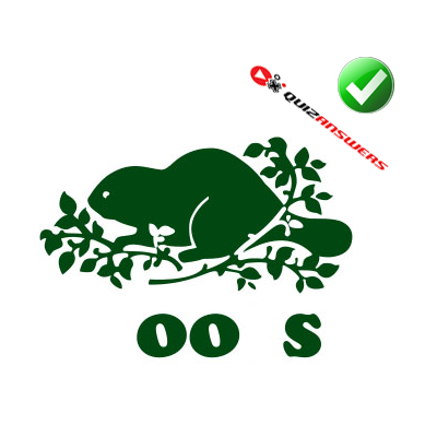 https://www.quizanswers.com/wp-content/uploads/2014/09/green-castor-logo-quiz-by-bubble.png