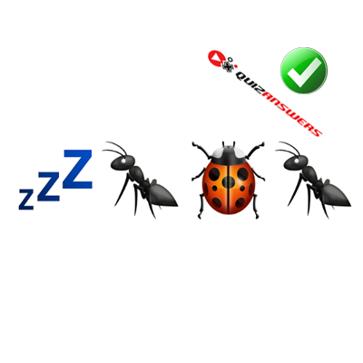 https://www.quizanswers.com/wp-content/uploads/2015/01/letters-zzz-bugs-guess-the-emoji.png
