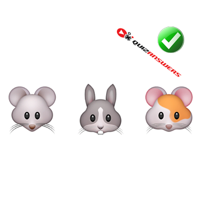 https://www.quizanswers.com/wp-content/uploads/2015/01/mouse-rabbit-hamster-guess-the-emoji.png